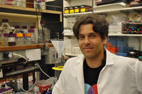 Sean Cutler is an assistant professor of plant cell biology at UC Riverside.  Photo credit: UCR Strategic Communications. (Additional images below.)