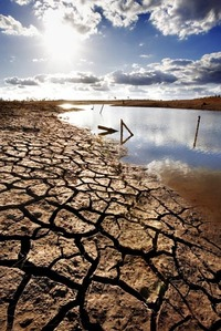 A lake dries up because of drought.  Photo courtesy of the College of Natural and Agricultural Sciences, UC Riverside.