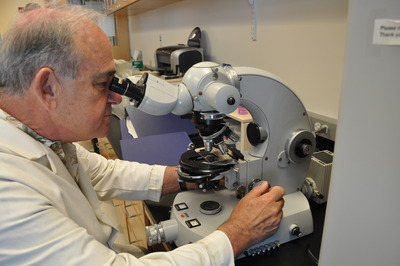 Brian Federici peers into a microscope. Photo credit: UCR Strategic Communications.<br />