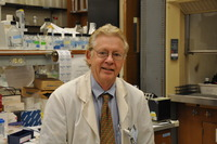Anthony Norman is a distinguished professor of biochemistry and biomedical sciences (emeritus) at UC Riverside, and an international expert on vitamin D.  Photo credit: UCR Strategic Communications.