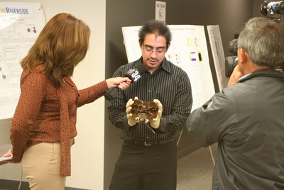 Xorge Alanis shows Cecilia Bogran, a reporter from Univision 34 Los Angeles KMEX, a horseshoe crab he uses to research nerve injuries.