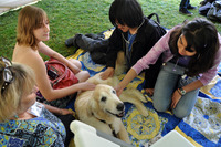 Students pet a therapy dog during pre-finals week last spring.