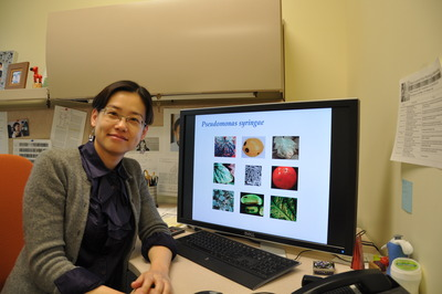 Wenbo Ma is an assistant professor of plant pathology and microbiology at UC Riverside.  Photo credit: UCR Strategic Communications.