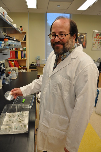 Howard Judelson is a professor of plant pathology at UC Riverside.  Photo credit: UCR Strategic Communications.