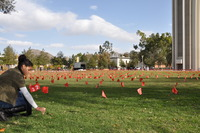 A UC Riverside student places one of 5,000 flags on the campus lawn Thursday, Dec. 1 to mark World AIDS Day.