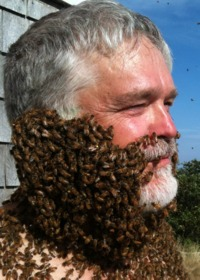 A swarm of bees clusters on bee expert Kirk Visscher's face, attracted to the queen in a cage beneath his chin.  Photo credit: Visscher lab, UC Riverside.  (More photos and a video below.)