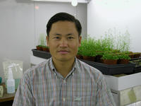 Jian-Kang Zhu, an internationally renowned leader in plant science, has been named the next director of the UCR Institute for Integrative Genome Biology.  (Photo credit: J-K Zhu.)