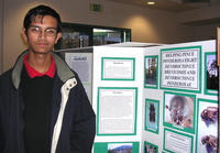 North High School student Daniel Kari is continuing his research on bark beetles.