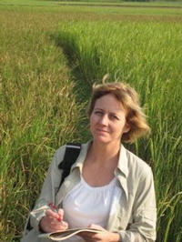 Julia Bailey-Serres, a professor of genetics at UC Riverside, in a farmer's field at Nuagaon, near Cuttack, India. The background shows (left) non-Sub1 rice and (right) flood-tolerant, Sub1 rice.  As seen in the photo, only the Sub1 rice variety is thriving.  Photo credit: P. Ronald.  (Additional image below.)