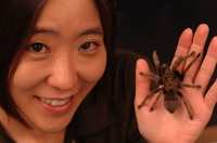 Cheryl Hayashi is a professor of biology at UC Riverside and an internationally renowned spider silk expert. Photo credit: UCR Strategic Communications.