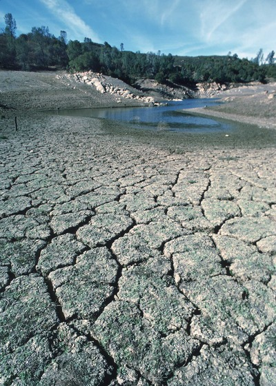 One of the effects of drought. Photo courtesy of USDA Natural Resources Conservation Service.