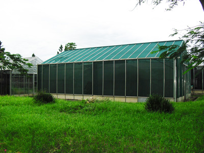 Photo shows an enclosed greenhouse in Kenya where experiments were conducted.  The greenhouse contained two faux huts (see photo below) with carbon dioxide-emitting traps placed in each of them.  Photo credit: Ray lab, UC Riverside.
