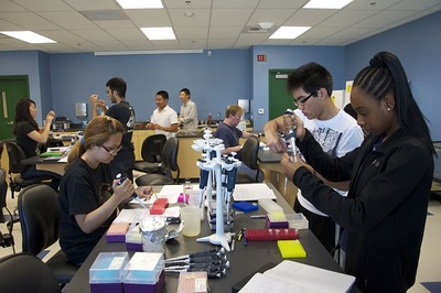 UC Riverside undergraduates seen in the HHMI Experimental Laboratory at the Neil A. Campbell Science Learning Laboratory, June 20-24, 2011.  Photo credit.  J. Burnette, UC Riverside.