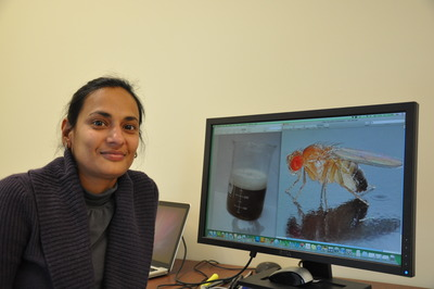 Anupama Dahanukar is an assistant professor of entomology at UC Riverside.  Photo credit: UCR Strategic Communications.