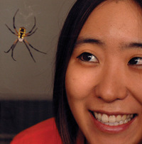 Cheryl Hayashi is a professor of biology at UC Riverside and an expert on spider silk.  Photo credit: UCR Strategic Communications.