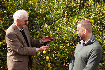 UC Riverside Executive Vice Chancellor Dallas Rabenstein (left) releases parasitic wasps as Mark Hoddle, the director of the Center for Invasive Species Research, looks on.  Photo credit: Mike Lewis, CISR, UC Riverside.