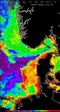 Chlorophyll concentration measured during an algae bloom in the Skagerrak region of Denmark. Image: Remote Sensing Group, Centre for Coastal and Marine Sciences, Plymouth Marine Laboratory.